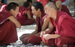 Le Thibet - discutant des moines - monastère de sérums Photographie stock