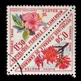 Le timbre imprimé au Cameroun montre des fleurs avec le sinensis et l'Erythrina de rosa de ketmie d'inscription images libres de droits