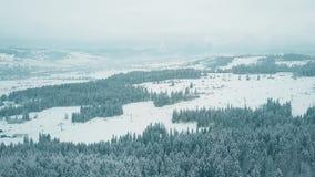 Le tir aérien d'une station de sports d'hiver incline en Pologne du sud, les montagnes de Tatra Photos stock
