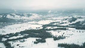 Le tir aérien du ski de montagne incline en Pologne du sud, les montagnes de Tatra Photographie stock
