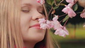 Le tir en gros plan de la fille attirante renifle les fleurs roses, femme apprécie l'odeur des fleurs se développantes de fleur d clips vidéos