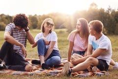 Le tir extérieur des amis heureux ont pincic pendant le jour ensoleillé d'été, se reposent ensemble sur le plaid, ont des express Image stock