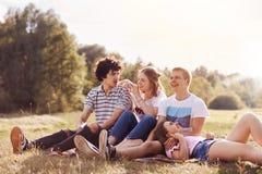 Le tir extérieur des jeunes heureux ont des sourires de charme, examinent la distance, se reposent sur le plaid, la pose contre l Photo libre de droits