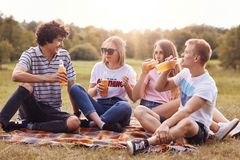 Le tir horizontal des amis heureux ont le pique-nique, boivent de la bière froide, apprécient le temps d'été, se reposent sur le  Photos stock