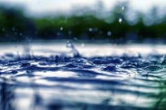 Le tir sous-marin de l'herbe et des usines a submergé dans l'eau claire avec un bon nombre des airbubbles et de réflexion sur la  Photographie stock libre de droits