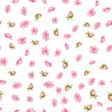 Le tissu élégant de fleurs Photographie stock libre de droits