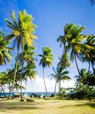 Le Tobago Images libres de droits