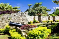 Le Tobago Image libre de droits