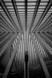 Le toit de la gare ferroviaire de Liège-Guillemins Photo stock