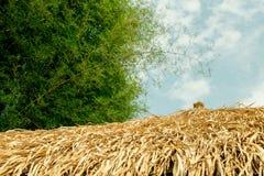 Le toit est fait d'herbe, toit et ciel Photographie stock