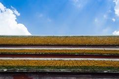 Le toit thaïlandais Photos stock