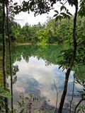 Le tonalità della scena di colori verdi della sorgente di acqua calda accumulano circondato dal TR Fotografie Stock