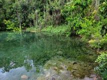 Le tonalità della scena di colori verdi della sorgente di acqua calda accumulano circondato dalle FO Fotografia Stock