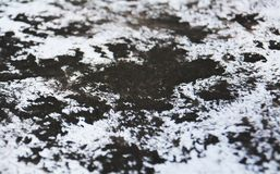 Le tonalità grige bianche nere della pittura, punti contrappongono il fondo dell'acquerello della pittura, fondo astratto della p immagine stock libera da diritti