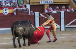 Le toréador espagnol Enrique Ponce dispose à tuer des WI d'un taureau Images stock