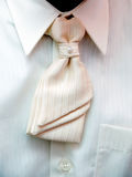 Le torse du marié avec la relation étroite blanche Photo libre de droits