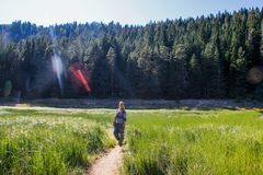 Le touriste de randonneur de fille se tient parmi la verdure, les montagnes et les lacs image stock