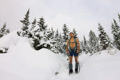 Le touriste masculin avec un sac à dos, avec un torse nu et des jambes est AMO Photos stock
