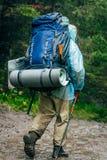 Le touriste passe par les bois Photographie stock libre de droits