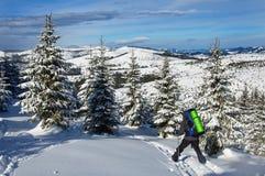 Le touriste sur les skis en bois avec le grand sac à dos monte par la belle forêt couverte de neige image stock
