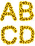 Le tournesol marque avec des lettres ABCD Photographie stock libre de droits