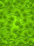 Le trèfle vert-foncé part du fond Photo stock