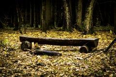Le trône des habitants de forêt images libres de droits