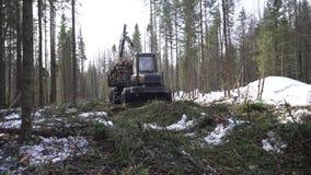 Le tracteur au rassemblement de complot est tombé bois en hiver banque de vidéos