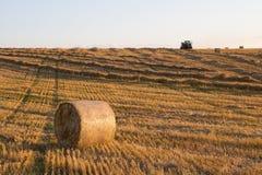Le tracteur rassemble l'herbe image libre de droits