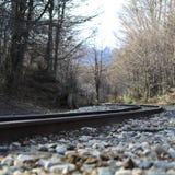 Le train dépiste le Patagonia image stock