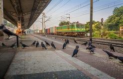Le train de marchandises passe un début de la matinée indien abandonné de gare ferroviaire Photographie stock libre de droits