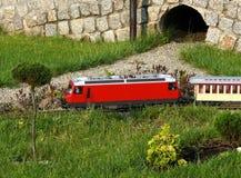 Le train et le tunnel Photographie stock libre de droits