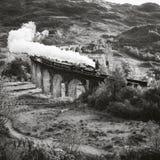 Le train historique de vapeur croise un viaduc Photographie stock