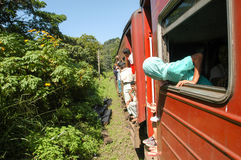 Le train vers Kandy sur Sri Lanka Images libres de droits