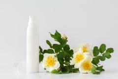 Le traitement de beauté de soins de la peau avec a monté Photo libre de droits