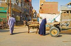Le transport dans Edfu Image libre de droits