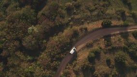 Le transport de touristes passe sur le chemin de terre de enroulement par la forêt et les buissons clips vidéos