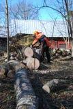 Le travailleur coupe un arbre tombé par vent photos stock