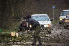Le travailleur coupe un arbre tombé sur la route image libre de droits