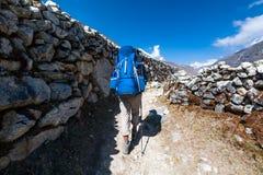 Le Trekker approchant la La de Renjo transmettent une manière au camp de base d'Everest Images libres de droits