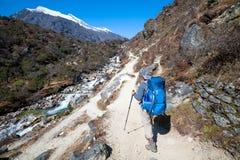 Le Trekker approchant la La de Renjo transmettent une manière au camp de base d'Everest Photo libre de droits