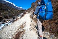 Le Trekker approchant la La de Renjo transmettent une manière au camp de base d'Everest Image stock