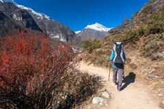 Le Trekker approchant la La de Renjo transmettent une manière au camp de base d'Everest Image libre de droits