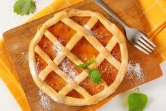 Le trellis a complété le crostata de tarte de fruit images stock