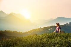 Le tribù alla piantagione della foglia di tè sistema nella mattina, tribù della collina Immagini Stock Libere da Diritti