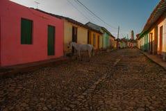 Le Trinidad, Cuba Rue cubaine traditionnelle avec la route de pavés ronds et les maisons multicolores Photo stock