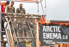 Le trio arctique de lavement prennent le plongeon image stock