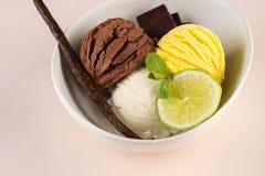 Le trio de la vanille et de la chaux savoureuses de chocolat a assaisonn? le dessert surgel? dans une cuvette blanche photo libre de droits
