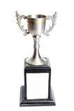 Le trophée argenté de tasse Images stock