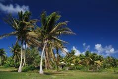 Île tropicale de Polynésie française Images libres de droits